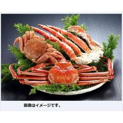 魚介類 水産加工品 カニ 蟹 ギフト セット 詰め合わせ 贈り物 北海かにづくし 御祝 お祝い お礼 贈り物 御礼 食品 グルメ ギフト お中元 御中元