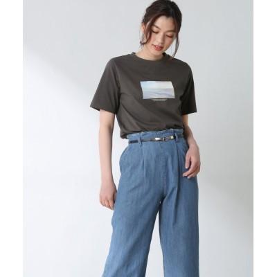 (Honeys/ハニーズ)半袖フォトTシャツ/レディース ブラック