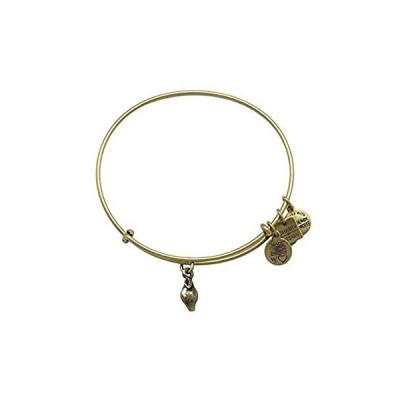Alex and Ani Charity by Design Zest for Lifeバングルブレスレット【並行輸入品】