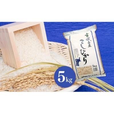 【令和2年産】宮城県 栗原産 特別栽培米「コシヒカリ」白米 5kg