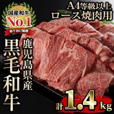 【43475】鹿児島県産A4等級以上黒毛和牛ロース1.4kg 焼肉用