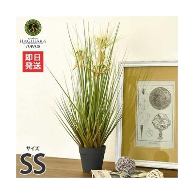 ハギハラ 人工観葉植物 サニーグラス #1728 (SS/53cm) [人工植物 造花 観葉植物]
