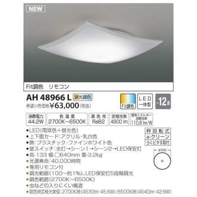 【送料最安値!】KOIZUMIコイズミ AH48966L  シーリング