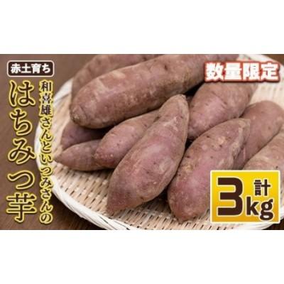 和喜雄さんといつみさんのはちみつ芋3kg_iio-3931