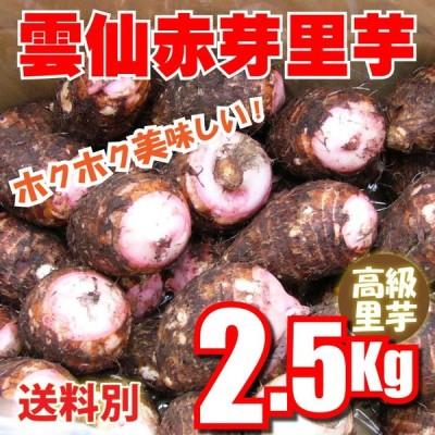 里いも 雲仙島原産 赤芽里芋 2.5Kg 混合サイズ 無農薬栽培