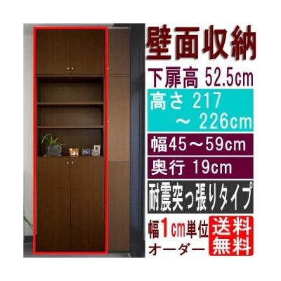 薄型壁面文庫本棚 整理棚 高さ217〜226cm幅45〜59cm奥行19cm 下扉高さ52.5cm