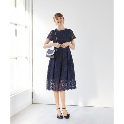 ドレス 【aimer anche】ラッセルコードレース袖付きドレス  / 結婚式・2次会・パーティードレス