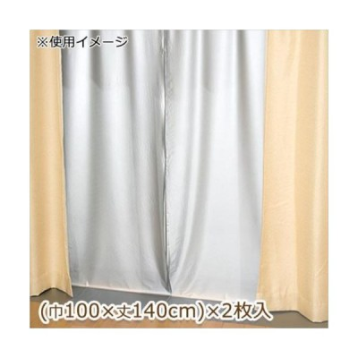 断熱カーテンライナー 遮光タイプ 巾100cm×丈140cm 2枚入 グレー(GY) (APIs)