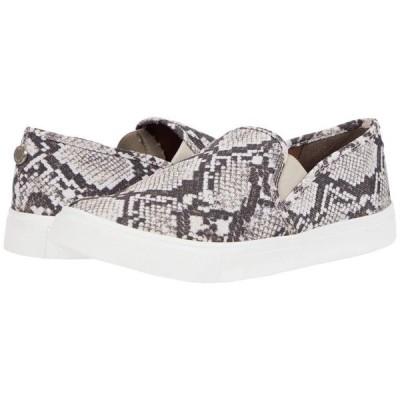スティーブマデン ユニセックス レスリング Safary Sneaker