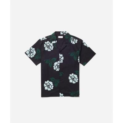 シャツ ブラウス Canty Rose SS Shirt
