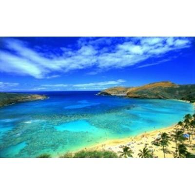絵画風 壁紙ポスター (はがせるシール式) ハワイ オアフ島 ハナウマ・ベイ ビーチ リゾート キャラクロ HWI-024W1 (ワイド版 921mm×5