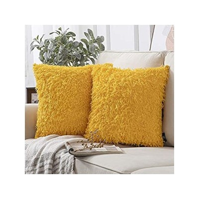 Phantoscope Pack of 2 Fuzzy Faux Feather Throw Pillow Covers Soft Velvet Se