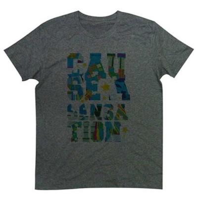 Tシャツ 流行のデカ文字、一発で目を引きそうな カラーリング グラフィックTee