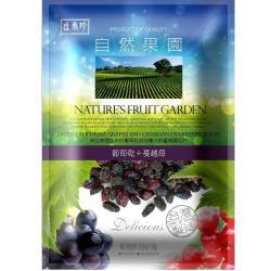 【盛香珍】自然果園130g