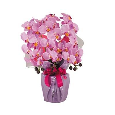 神戸花物語(Kobe Flower Story) 造花 胡蝶蘭 3本立ち ラベンダー cotyoran-3-lv 本体: 高さ60cm 本体: 幅45cm