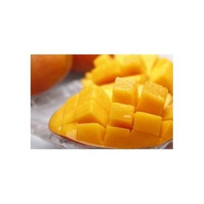 ふるさと納税 【A14015】鹿児島県産 美味しさまるごと冷凍マンゴー!約1kg 鹿児島県肝付町