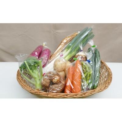 季節の野菜セットB