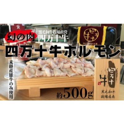 20-721.幻の肉!四万十牛ホルモン500g(2~3人前)