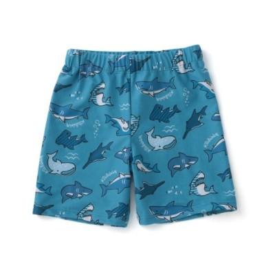 NARUMIYA ONLINE / 【SWIM】UVケア サメ柄スイムパンツ KIDS 水着/着物・浴衣 > 水着