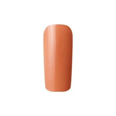 Fleurir Color Gel フルーリアカラージェル S24 テラコッタ 4ml