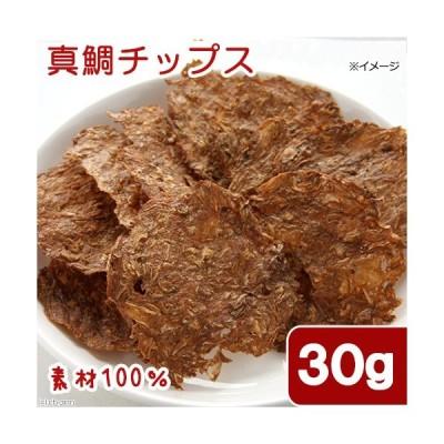 国産 真鯛チップス 30g 素材100% 犬猫用おやつ PackunxCOCOA