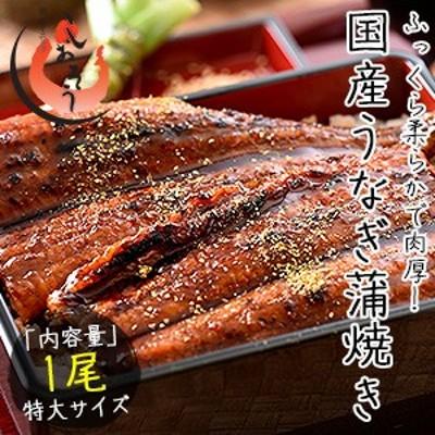 うなぎ 蒲焼き 国産 特大サイズ 200g×1尾 ウナギ 鰻