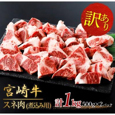 【訳あり】宮崎牛スネ肉(煮込み用)計1kg