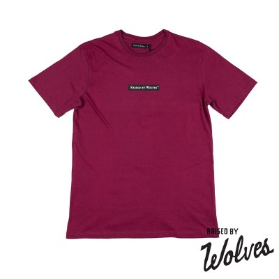 【RAISED BY WOLVES/レイズドバイウルブス】REGISTERED BOX LOGO TEE Tシャツ / HARVARD JERSEY(XL)