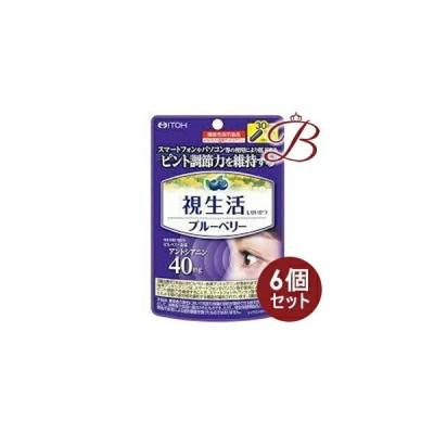 【×6個】井藤漢方 視生活 ブルーベリー 30粒