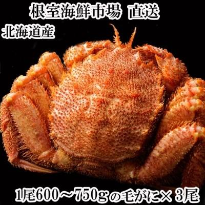 ボイル毛がに600~750g×3尾 D-11010