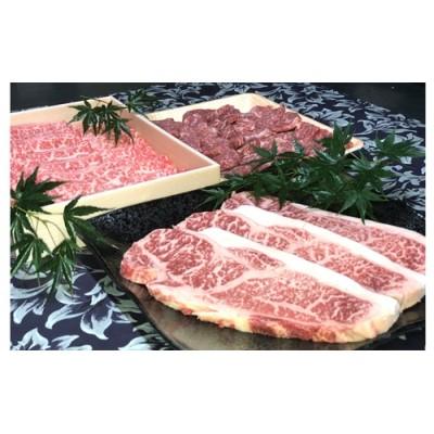 若狭牛 プレミアムセット( サーロインステーキ用 モモ焼肉用 ローススライス )