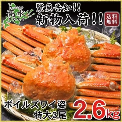 カニ 蟹 かに ズワイガニ ずわいがに 姿 3尾 特大 計2.6kg ボイル ずわい蟹 送料無料 1尾850g  お中元 敬老の日 お歳暮年末年始 ギフト  内祝