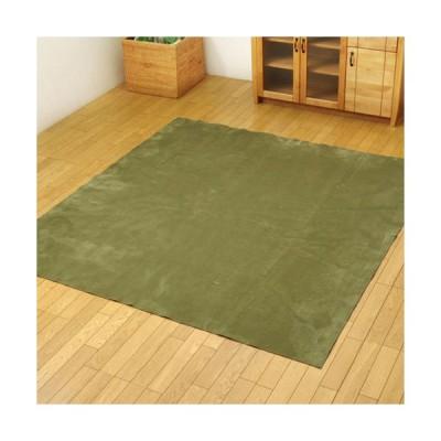 メーカー直送 イケヒコ ラグ カーペット 4.5畳 洗える 無地 イーズ グリーン 約220×320cm すべりにくい加工 ホットカーペット対応
