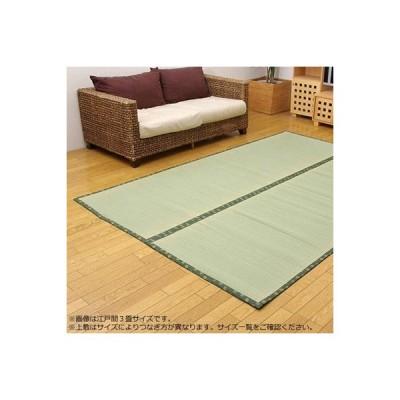 い草ラグ い草マット い草カーペット 涼しい ござ 畳 国産 おしゃれ 厚手 クッション 厚い 6畳 261×352 緑