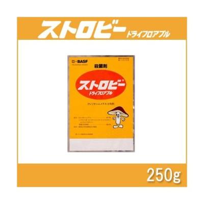 5個 ストロビードライフロアブル 250g 殺菌剤 農薬 イN 代引不可