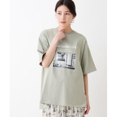 (SHOO・LA・RUE/シューラルー)USAコットンアソートプリントラウンドヘムTシャツ/レディース ライトグリーン(121)