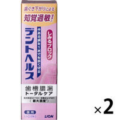 ライオンデントヘルスハミガキしみるブロック 85g 1セット(2本) ライオン 歯磨き粉 歯周病予防