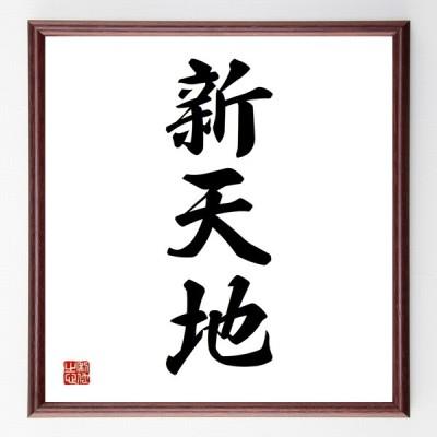 書道色紙/三字熟語『新天地』額付き/受注後直筆