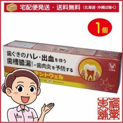 歯周口腔用デントウェル 薬用ハミガキ 100g [宅配便・送料無料] 「T60」