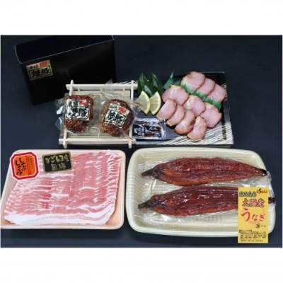 【B02056】鹿児島県大隅産うなぎ2尾・黒豚バラ・黒豚焼豚2個セット