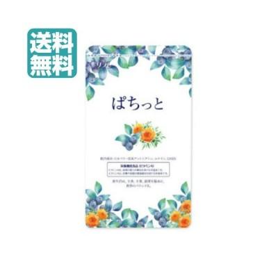 ビルベリー サプリメント アイケア ぱちっと 62粒 送料無料