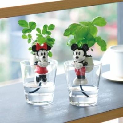 聖新陶芸 グローテール ディズニー ミッキーマウス・ミニ―マウス