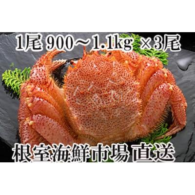 ボイル毛がに900g~1.1kg×3尾 D-14015