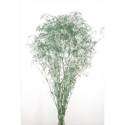 かすみ草 プリザーブドフラワー 花材 ソフトミニ カスミソウ ターコイズ 小分け そらプリ