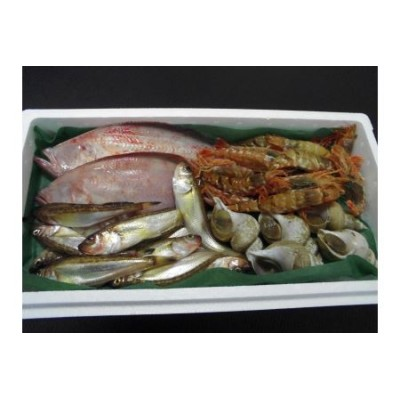 【D-5】岩美町旬の魚セットA