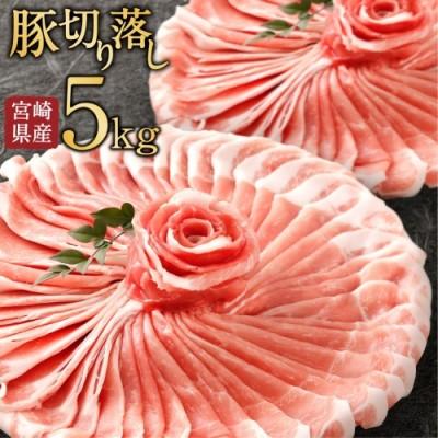 小分けで便利!10パックでお届け<宮崎県産豚肉5kg切落し>※90日以内に出荷【C240】