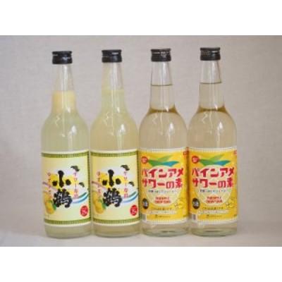 チューハイの素セット(パインアメサワーの素2本 ゆずレモン2本)600×4本