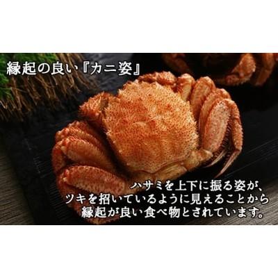 339. 毛蟹 姿 特大 800g 北海道産 食べ方ガイド・専用ハサミ付 カニ かに ボイル済み