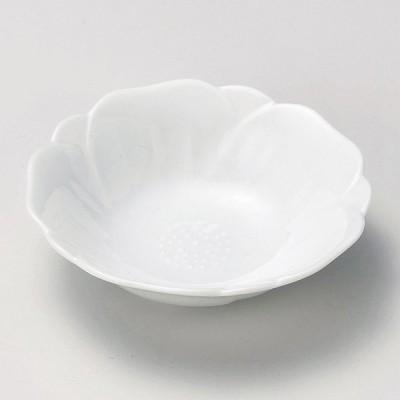 陶雅 白磁椿深皿