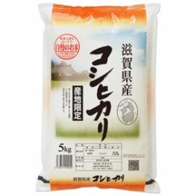 新米 コシヒカリ 5kg 送料無料 滋賀県 令和2年産 (米/白米 5キロ)